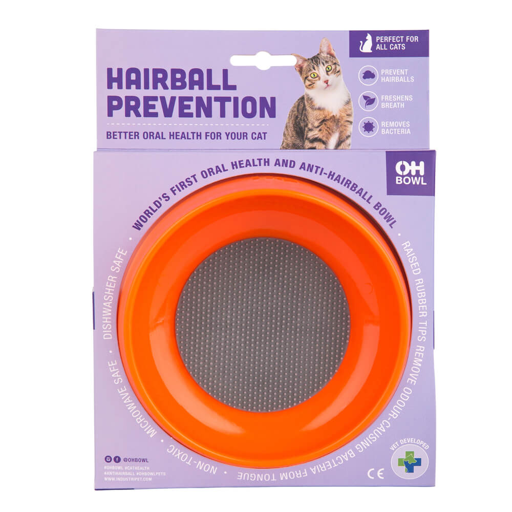 best cat bowl for good oral health