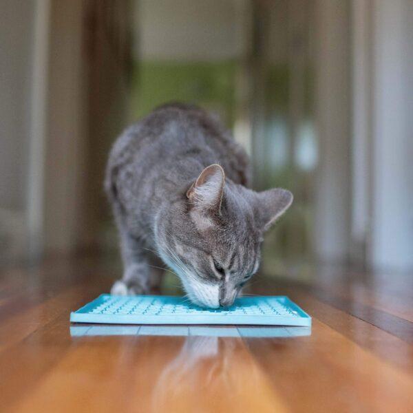 LickiMat Buddy cat slow feeder